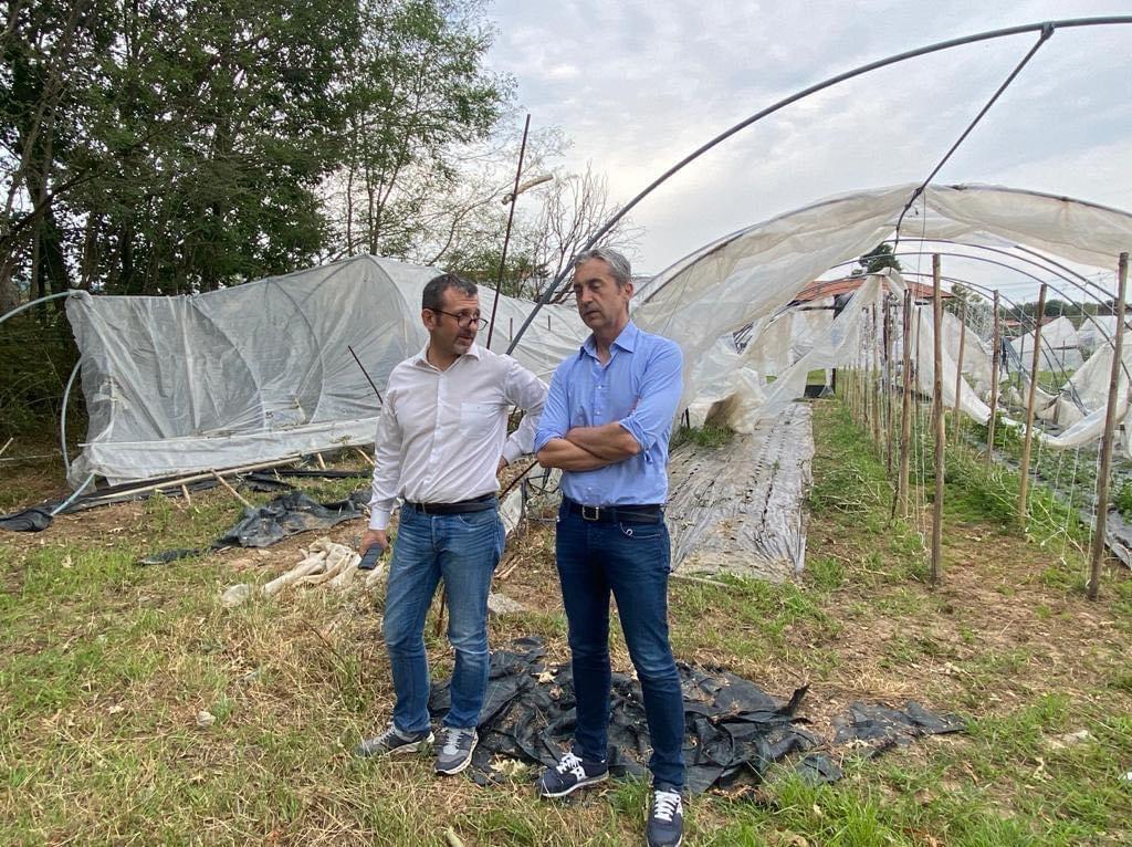 A Lozzolo per un sopralluogo alle aziende agricole colpite dalla tempesta di grandine